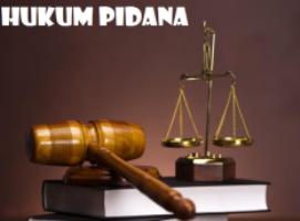 Fungsi Hukum Pidana