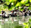 4 Keunggulan Perang Gerilya dalam Pertempuran